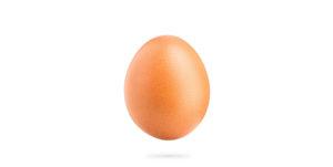 ferruzzi uova fresche grandi