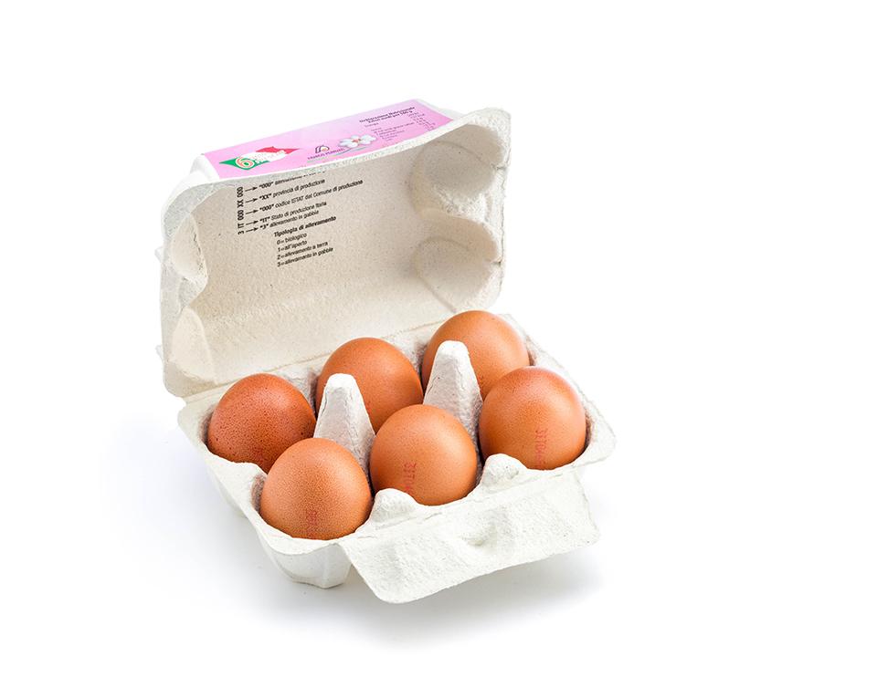 ferruzzi uova fresche medie allevamento standard