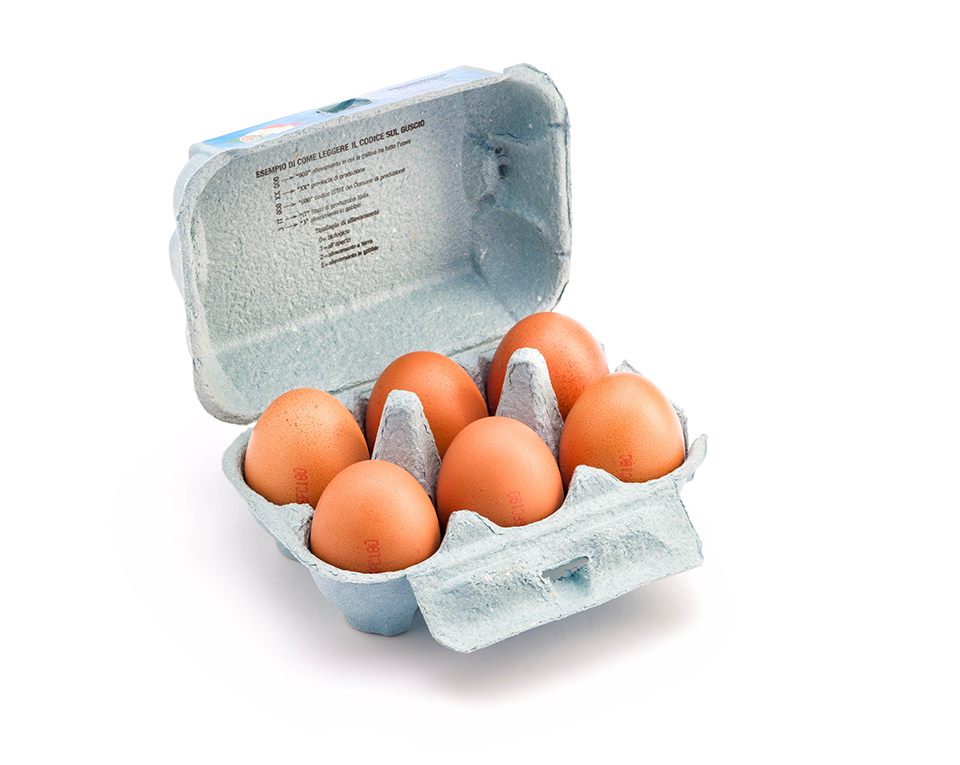 ferruzzi uova fresche grandissime allevamento standard